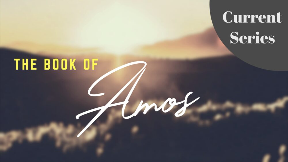 Amos (Current Series)
